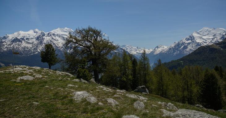 Sicht von Stand auf den Mischabel und Weisshorn Gebirge. Dazwischen der Breithorn und Klein Matterhorn